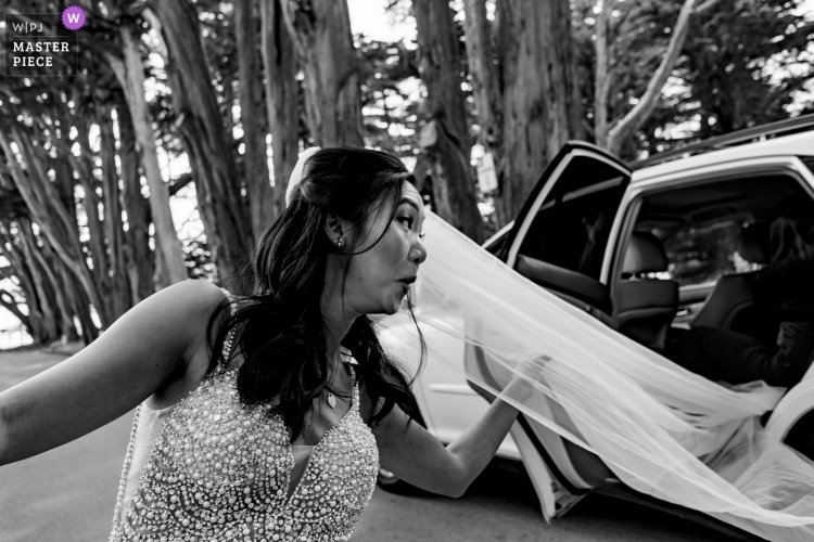 wedding-photographer-2473776
