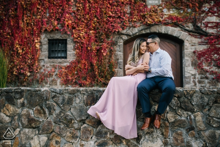 pre-wedding-portrait-photographers-2456286